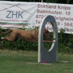 Oskar auf dem Weg / Flug zum Aufstieg in den Vierkampf 2